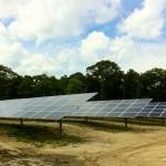 LISF Solar Ed Sappin